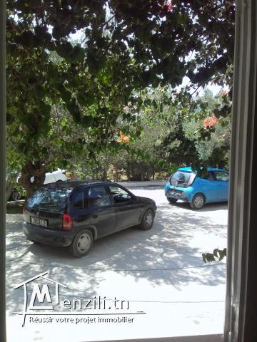 S+2 à Mrezga Hammamet