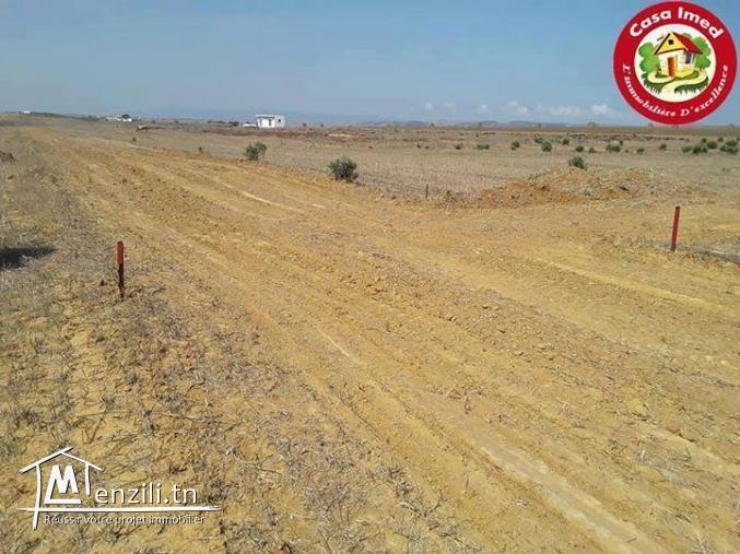 Vente des terrains à Manzel Brahim kélibia