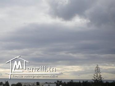 Un appartement de 75.20 m² ayant une terrasse de 30 m² à 185 MDT à El Mrezka