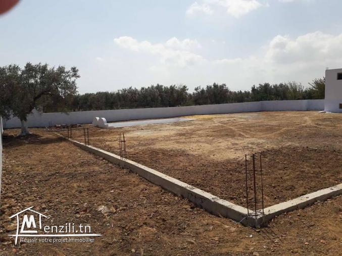 Un verger de 19200 m² à 790.000 DT aux environs de Hammamet