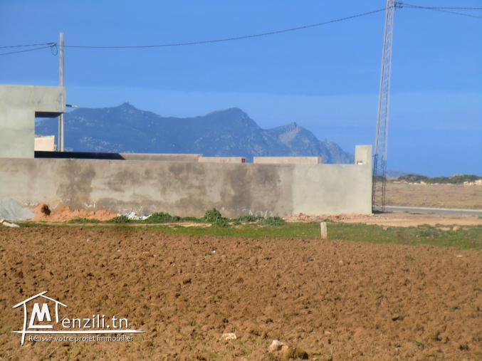 أرض للبيع في مدينة الهوارية  تطل على زمبرة a vendre