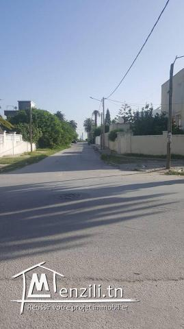 Terrain 1292m2 Rue jilani Marchand Ezzahra