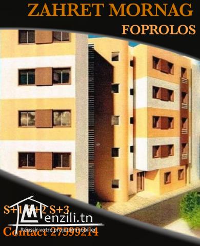 Appartement S2 Neuf Foprolos Chez Promoteur MORNAG
