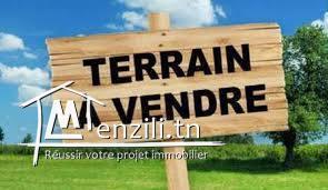 Terrain de promotion immobilière de 3713 m² Lot N° 018