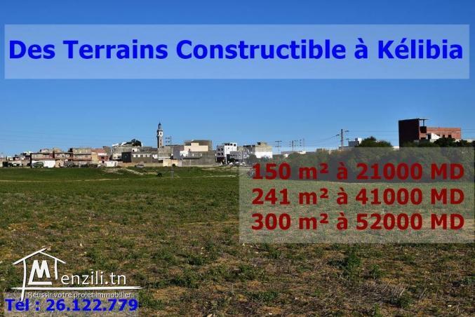Des lots de terrain constructible à Kelibia ville