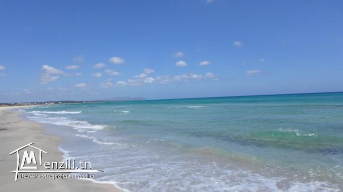 terrain zone calme route a la plage zahra kelibia