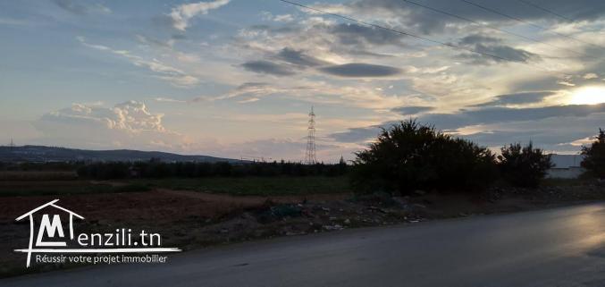 Terrain à usage d'habitation à Oued Ellil