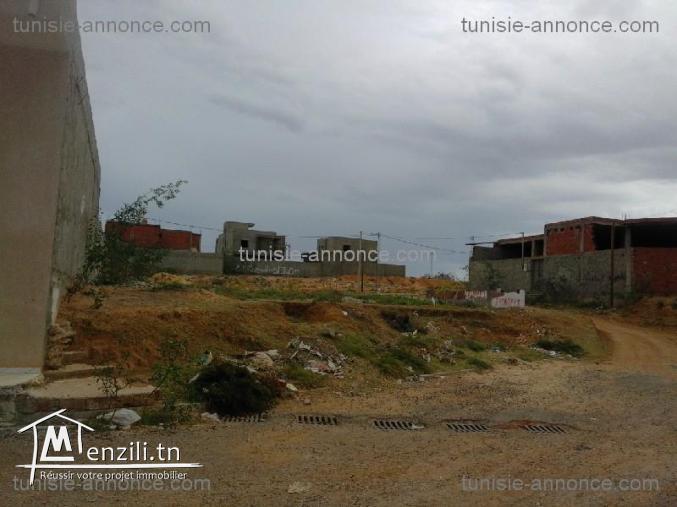Terrain titré à Jemmal (Monastir)