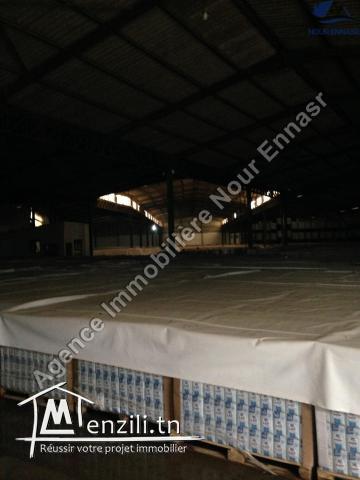 Dépôt 6600 M2 Charpente A Tunis Nord