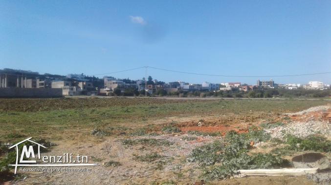 terrain sur route principale a la plage zahra kelibia