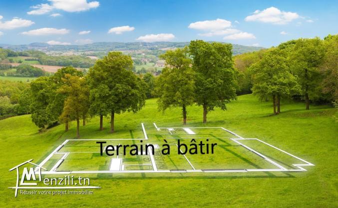 Terrain de 500 m² à AFH Mrezgua – Lot N°20