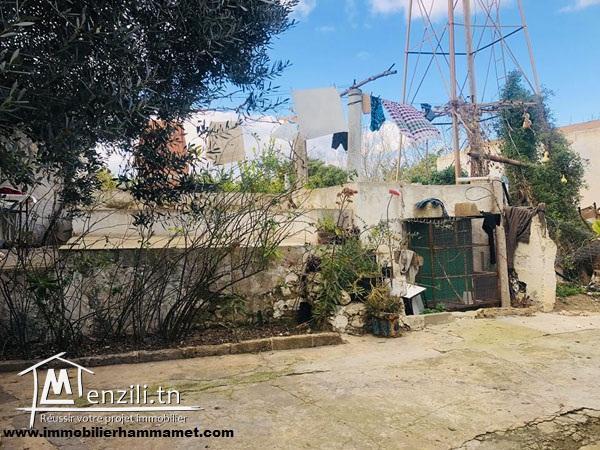 Terrain Donia à Hammamet