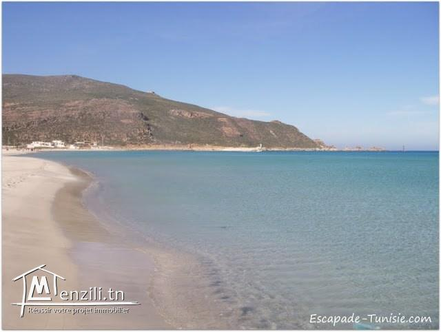 terrain zone calme a la plage kerkouane