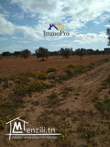 un terrain à vendre à El mey  de 8940 m²