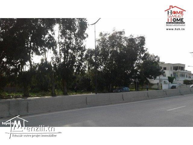Terrain Pont Daoud