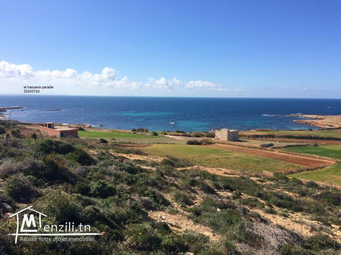 Terrain a vendre vue de mer  et de nature photo réel 25243743