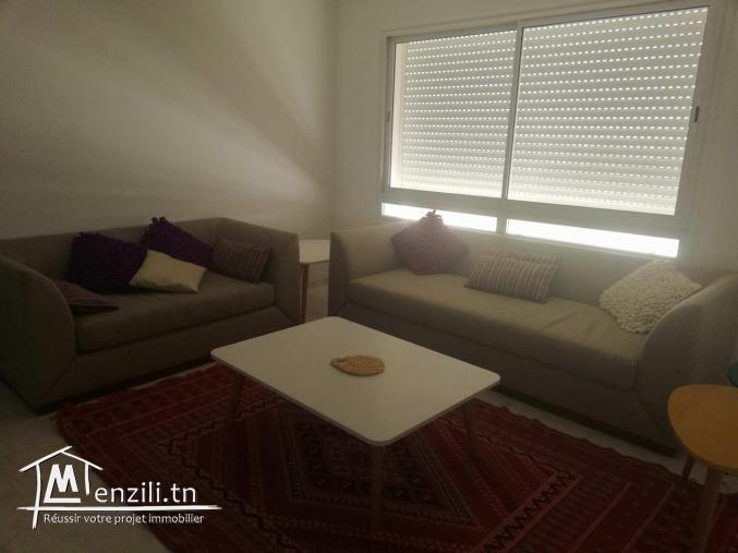 appartement s+1 meublé