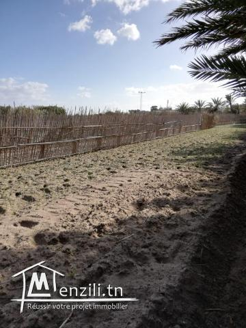 terrain a Ghar Elmelh