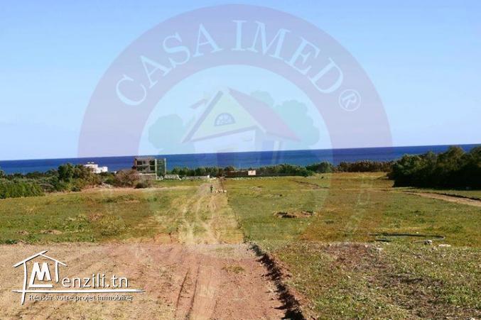 promotion terrain vue sur mer à kerkouane / kélibia