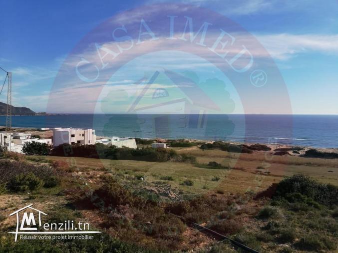 أراضي في الهوارية تبعد 800 م على البحر+300 م² ب-21 مليون.