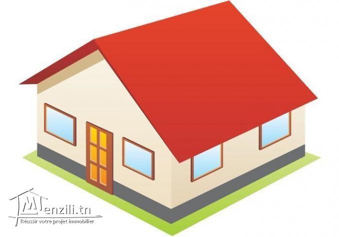 maison a vendre avec grande terrain