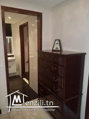 APPARTEMENT ARIELLE V721