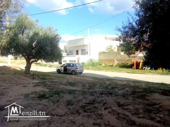 225m² sur la route face Carrefour Hammamet AD