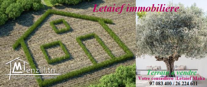 DTH:231 #VENTE: Terrain habitation ; #Un_Terrain_d'#une_superfcie250_mettre #à_kantaoui