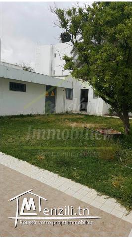Av un immeuble à el menzah1