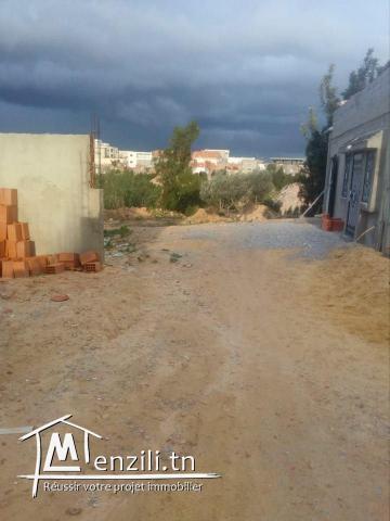 terrain de 200 m² entre mziraa et hammamet