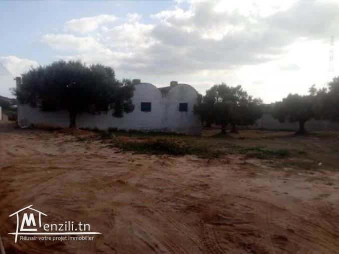 200 m² pour construire une villa à hammamet