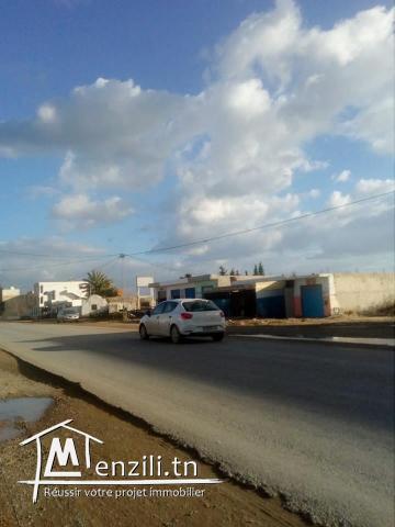 terrain commercial à sidi hammed de 1000 m²
