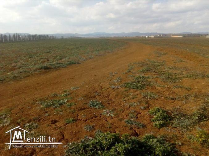 lot de terrain de 600 m²