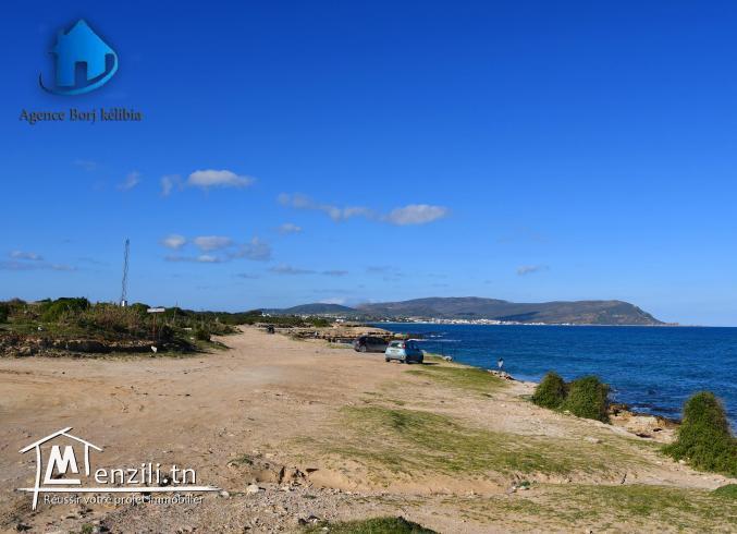 Terrain à vendre à plage dar allouch 95885014