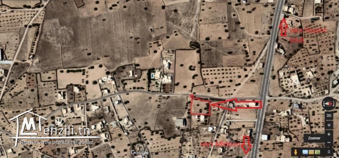Terrain a Djerba  de 3000 m2