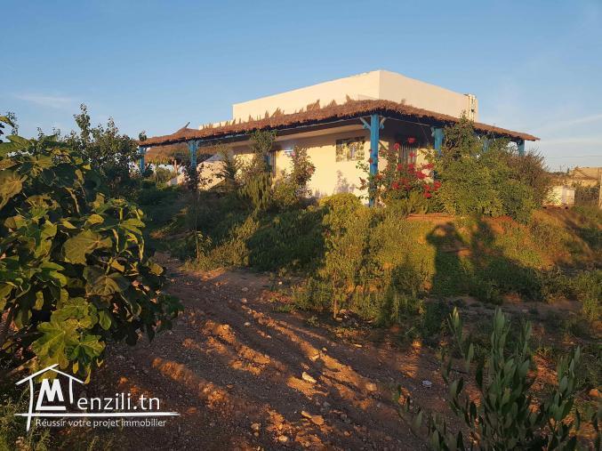 Ferme à Sidi Bou Ali