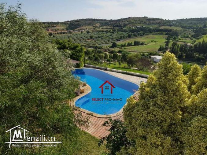 Villa avec piscine à Hammamet – NLE034