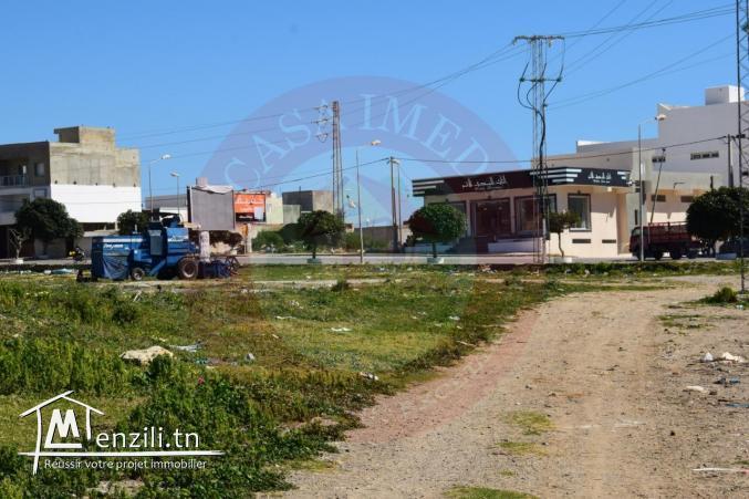 un terrain a vendre à kélibia pour plus d'info 26305654