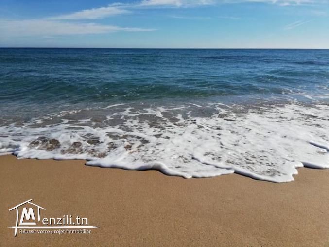 Des terrains à 800 mètres du plage à El_Haouaria