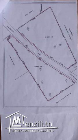 Un terrain à vendre à Mazran ,Zone agricole