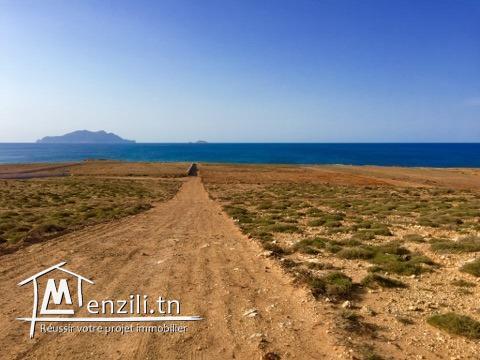 Nouveau lotissement  300 m² à plage sable blanc Elhaouaria