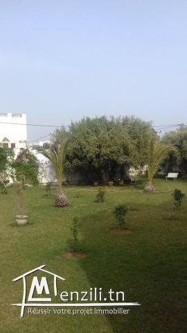 Location Spacieuse villa cités les jasmins AFH