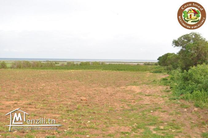 large terrain a lebna