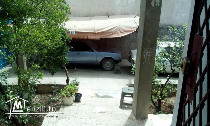 Villa, 2 locals commercial, jardin, et abri de 2 voitures a vendre