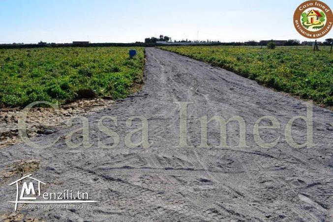 un superbe terrain a hammamet prix 27 mille dinars