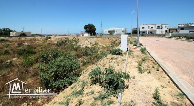 Beau terrain à la Soukra