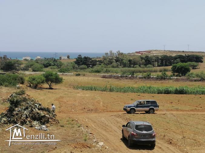 un Terrain vue sur mer à El Haouaria