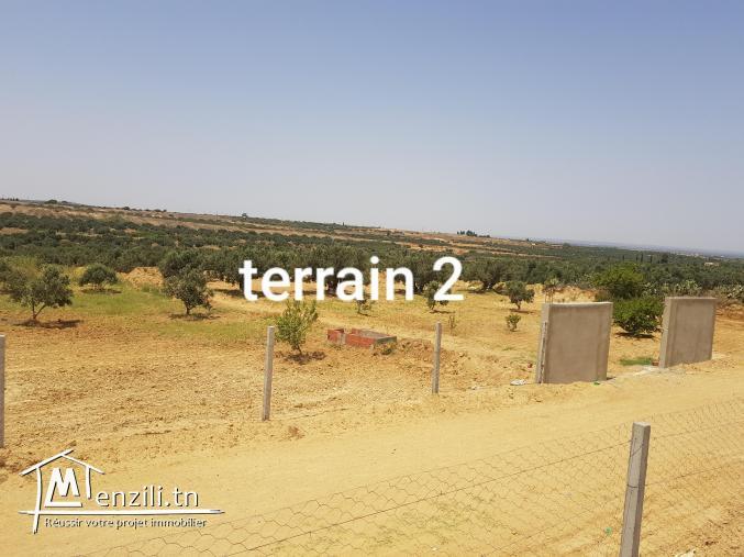 2 terrains agricoles