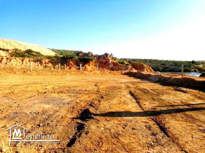 terrain proche hammamet 800m AD