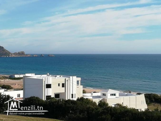 un Terrain au plage sud d'El Haouaria